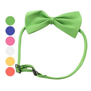 USD $ 1.49   Bow Tie Style Collar for Dogs and Cats (Assorted Colors