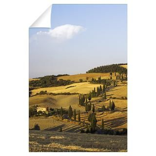 Wall Art  Wall Decals  Winding Road with Cypress