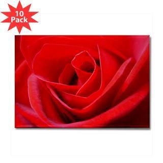 25 magnet 100 pk for valentine s $ 113 99 red rose romantic