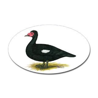 Duck Hunting Stickers  Car Bumper Stickers, Decals