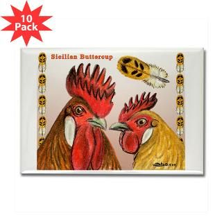 Sicilian Buttercup Chickens : Diane Jacky On Line Catalog