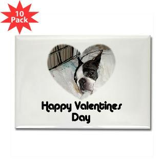 HAPPY VALENTINES DAY (BOSTON TERRIER)  BLAME MY PARENTS