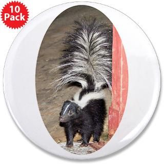 Little Skunk Big Tail : Trackers Tracking and Nature Store
