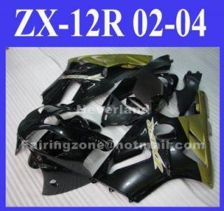 Kawasaki Ninja ZX 12R 02 03 04 zx12r ABS Fairing Kit