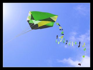 Single Line Parafoil Pocket Kite + Colourful Long Tail in Pouch Easy