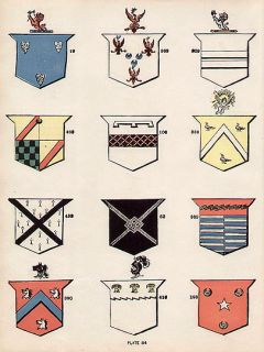 24 Irish SURNAMES Ireland Coats of Arms 100 Year Old Antique Print