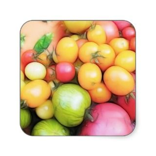 Harvest Time   Tomatoes! Square Stickers