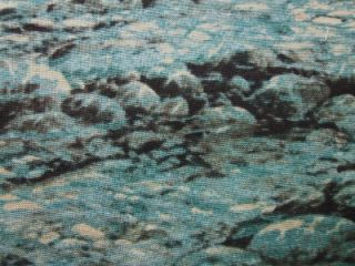 Water River Rocks Stream Landscape South Sea Fabric Yd