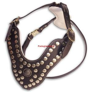 New Royal Studded Leather Dog Harness H11 Pitbull