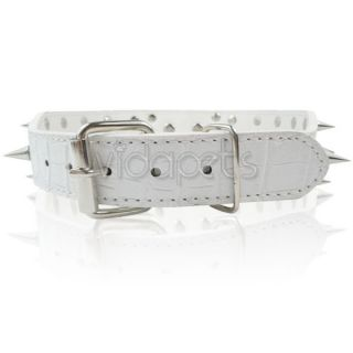 23 26 White Leather Spiked Dog Collar Pitbull Bully Spikes Extra