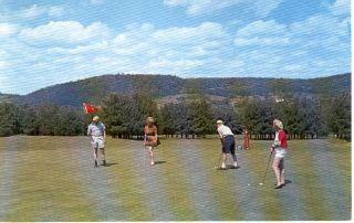 NY Liberty Golf Youngs Gap Hotel Postcard