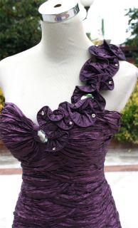 NWT NIKA   NIKI / KAPOOR $680 Eggplant Pageant Gown 10