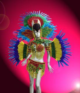 Rio Carnival Parade Dancer Showgirl Drag Queen Parrot Costume