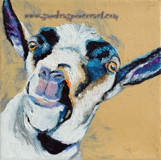 Original Oil Painting Alpine Goat Art 12x12 Fun Pet Portrait Farm