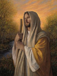 Loving Savior Jesus Lord Jon McNaughton Framed Picture