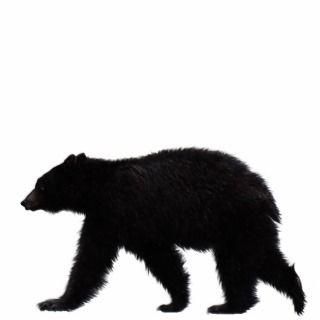 Printable Bear Cut Outs   New Calendar Template Site