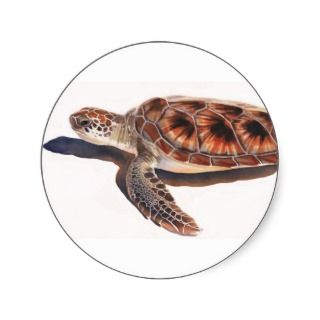 Sea Turtle Wildlife Watercolor Art Round Sticker