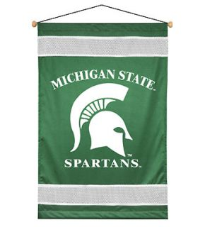 Michigan State Spartans Wall Accent Decor Sports Boys