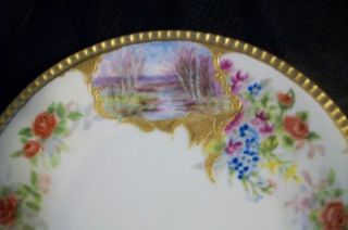 Hand Painted Antique Gold Cartouche Meadow Lake Plate