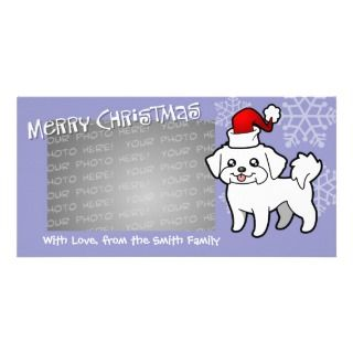 Christmas Maltese (puppy cut) photo cards by SugarVsSpice