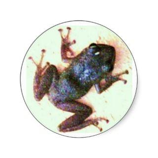 El Coqui Sticker