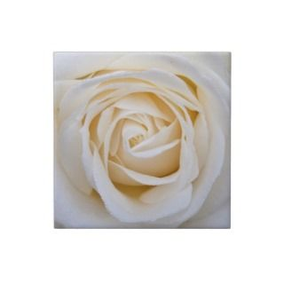White rose ceramic tile