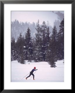 Man skiing cross country Pre made Frame