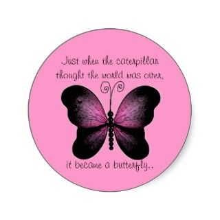 Pretty Pink and Black Butterfly Quote Stickers