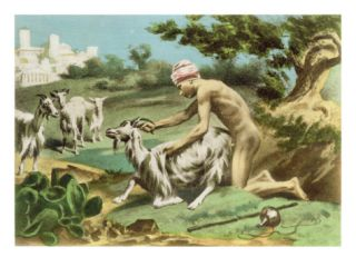 Ancient Greek Sodomising a Goat, plate XVII from De Figuris Veneris by F.K. Forberg, pub. 1900 Giclee Print by Edouard henri Avril