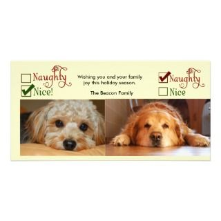 Two dog Christmas card photo template Photo Greeting Card