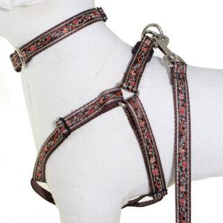 Dog Collars, Harnesses & Leashes Collars Lola & Foxy Nylon Dog Collars