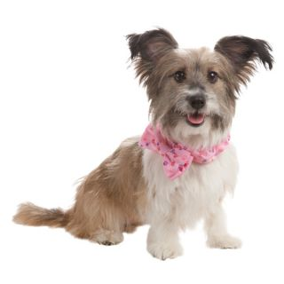 Luv A Pet™ Paw Bow Tie    Clothing & Accessories   Dog