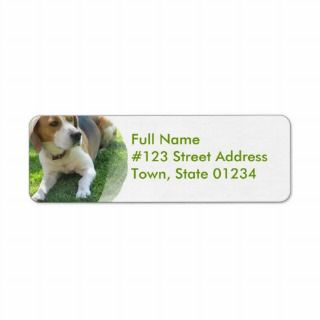 Beagle Hound Dog Return Address Label