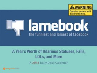 Lamebook   2013 Daily Desk Calendar Calendars