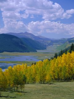 Rio Grande National Forest, Colorado, USA Photographic Print by Jean Brooks
