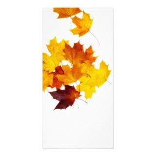 Maple leaves customized photo card