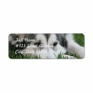Sleeping Husky Dog Mailing Label