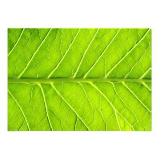 Green leaf personalized invite