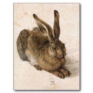 Albrecht Dürer   Junger Hase (Young Hare), 1502 Postcards
