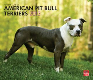 American Pit Bull Terriers, For The Love Of   2013 Deluxe Wall Calendar Calendars