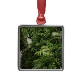 Rainforest Waterfall, Monteverde, Costa Rica Ornament