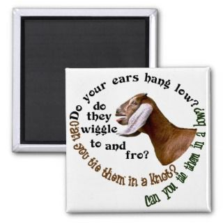 NUBIAN GOAT   DO YOUR EARS HANG LOW? REFRIGERATOR MAGNET