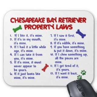 CHESAPEAKE BAY RETRIEVER Property Laws 2 Mouse Mat