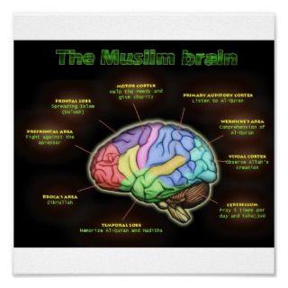 THE MUSLIM BRAIN Poster