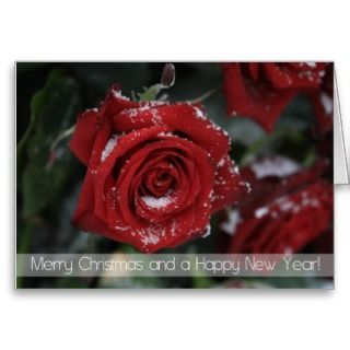 Merry Christmas Happy New Year snowy red rose card