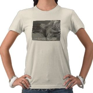 Charcharocles Megalodon Tooth T shirts