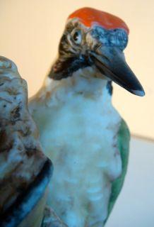 KAISER Künstler Statue Porzellan ART Sculpture Green Woodpecker by G