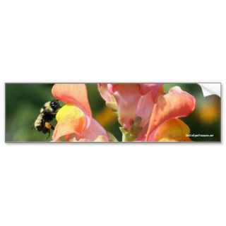 Bee On Snapdragon Flower Photo Bumper Sticker