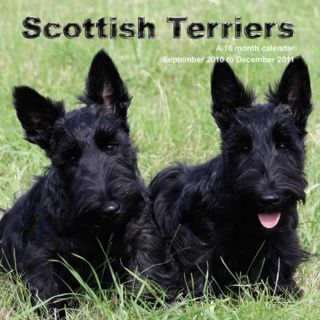 Scottish Terriers 2011 Wall Calendar