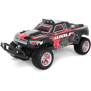 Remote Control 112 Scale Pro Wolf Flat Track Racer